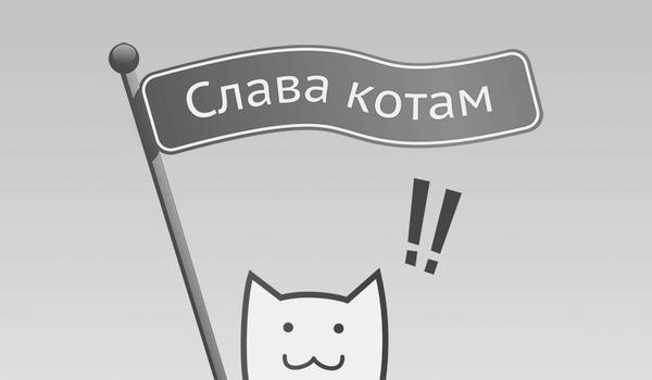 Слава котам!